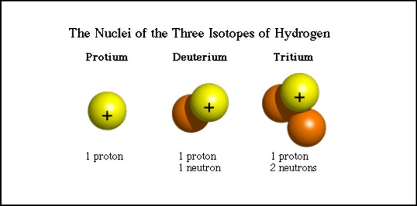 Which isotope of carbon is used